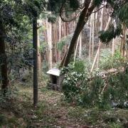 ジブリの森