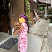 プリキュアとガウガウ犬
