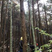 森林ボランティアの勉強
