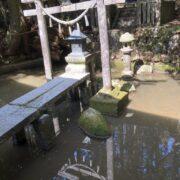 恵の雨と池の水